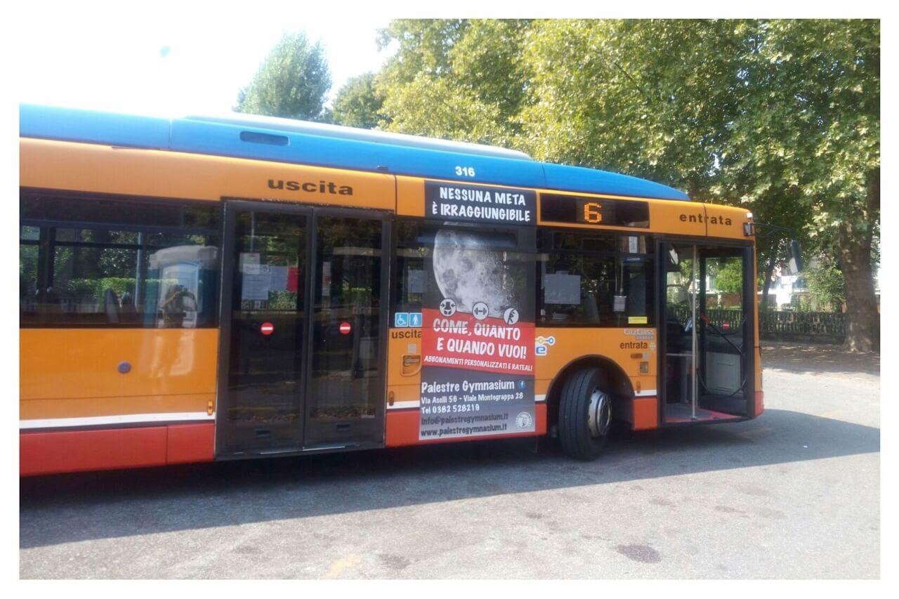 grafica autobus palestre gymnasium pavia